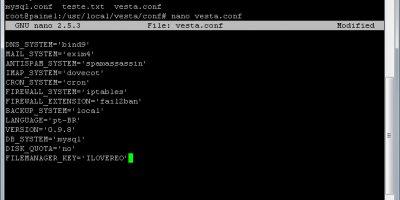 Como ativar o Gerenciador de Arquivos no VestaCP grátis