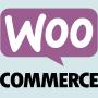 5 Temas WooCommerce para você baixar grátis (2019)